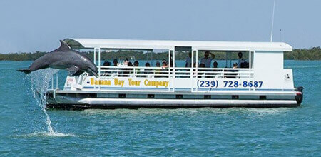 Private & Group Charters and Dolphin Tours